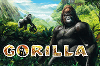 Gorilla от онлайн-клуба Супер Слотс