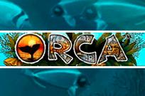 Orca – лучший автомат в клубе Супер Слотс