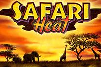 Автомат Safari Heat в клубе Супер Слотс